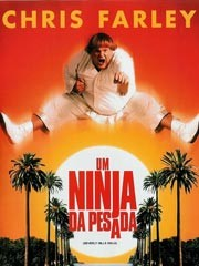 Um Ninja Da Pesada
